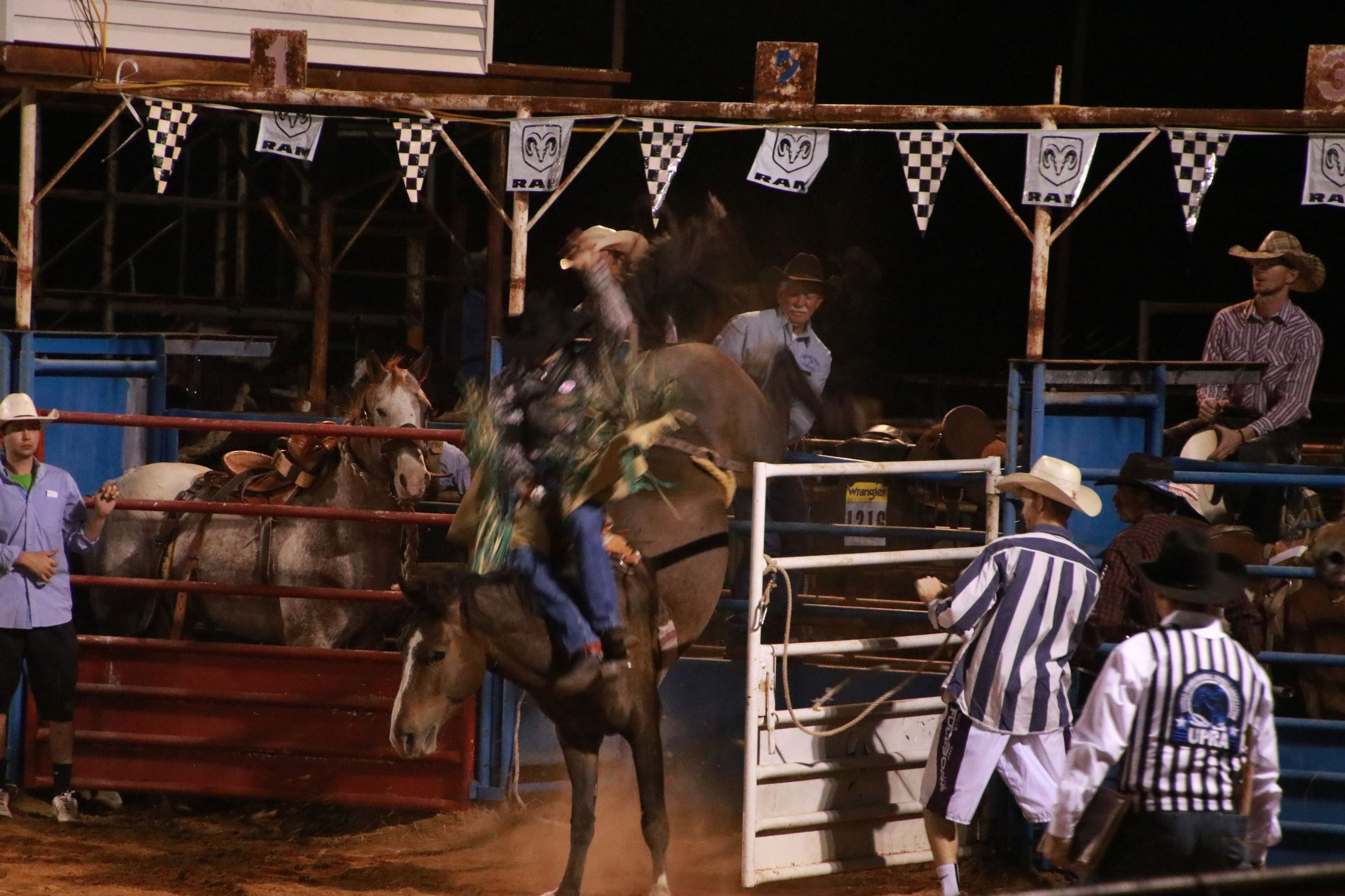 Excitement bursts out of the gate at Rockdale's Rodeo!